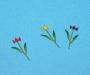 edu36223_gardenflowers_08_zpracovani