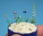 edu36223_gardenflowers_12_zpracovani