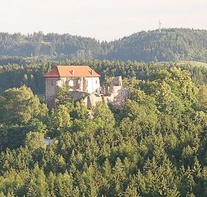 hrad_pecka_x