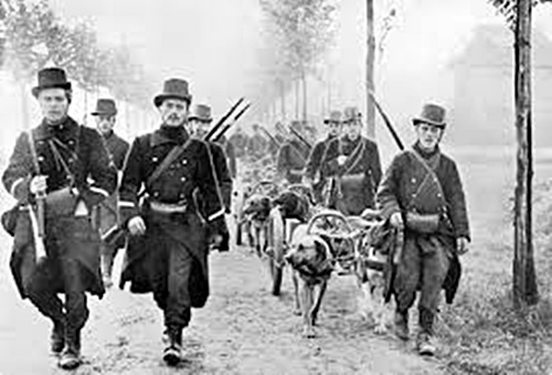 1914-belgian-carabiniers-dog-cart