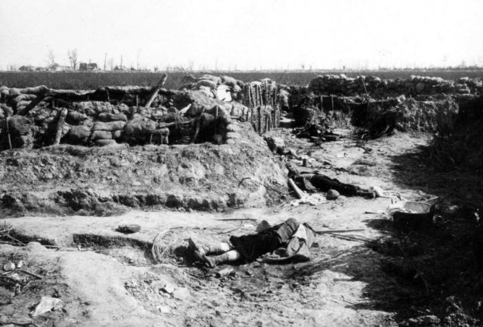 Langemarck 1914