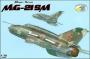 MiG-21MS_RVbox