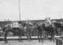 10.9.1915_Navagonýrování_