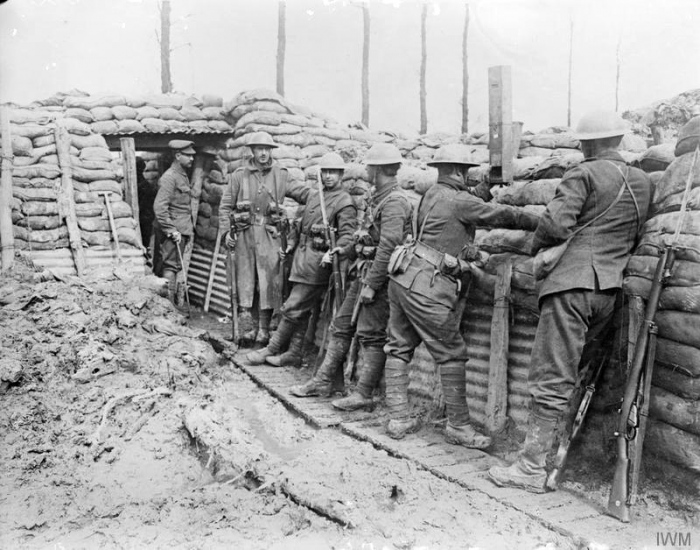 THE CANADIAN EXPEDITIONARY FORCE ON THE WESTERN FRONT.jpg