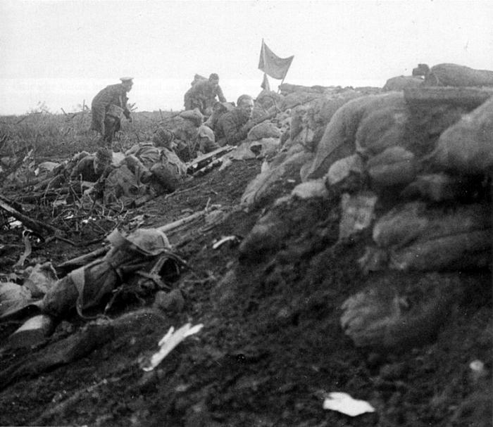 The Battle of Bellewaarde Ridge.jpg