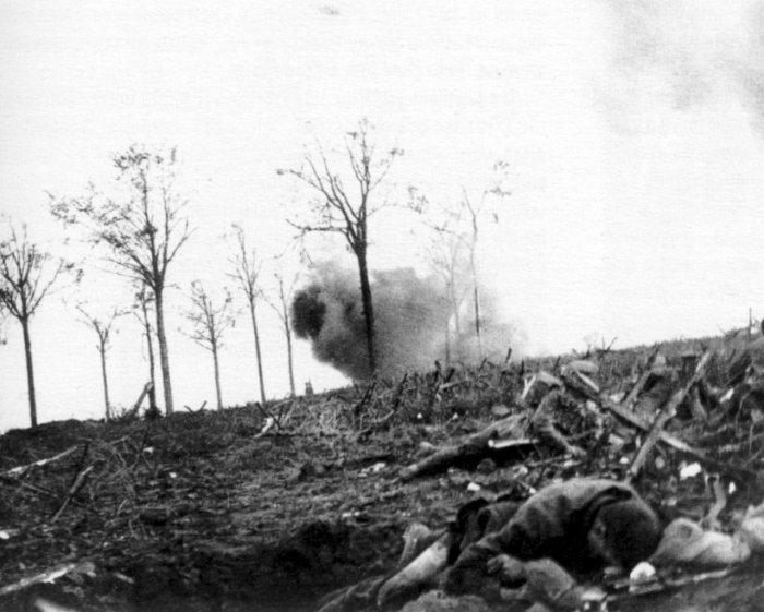 The Battle of Bellewaarde.jpg
