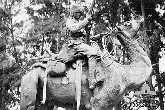 Bikiner_Camel_Corps_soldier