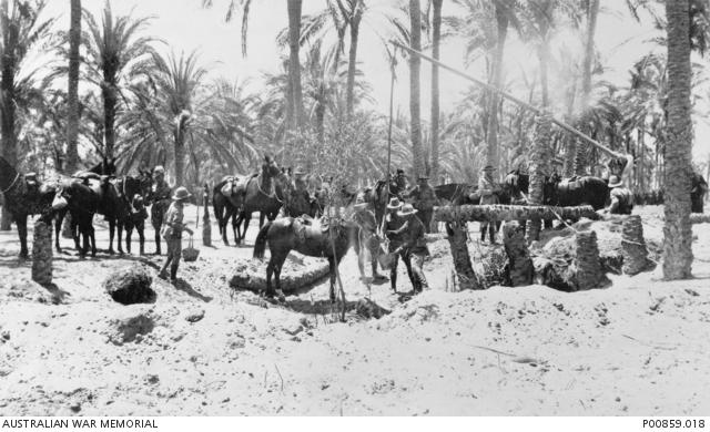 Katiya australian troops