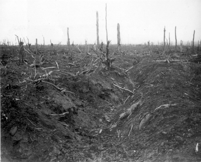 15a German trench in Delville Wood