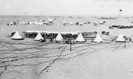 5.8aaaaa Australian_camp_near_Romani_circa_1916_AWM_photo_A02435