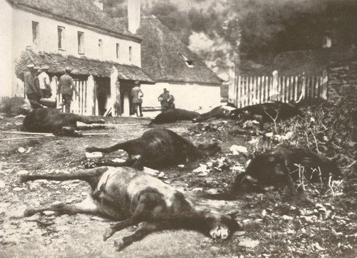 30.9c Das rumänische Dorf Verestorony am Eingang zum Roter-Turm-Pass