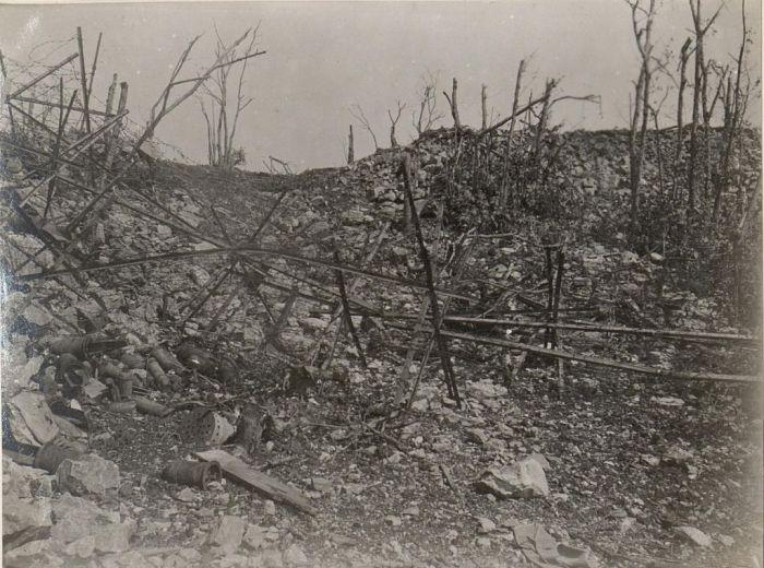 Kostanjevica 1917