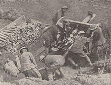 Scarpe River artillery