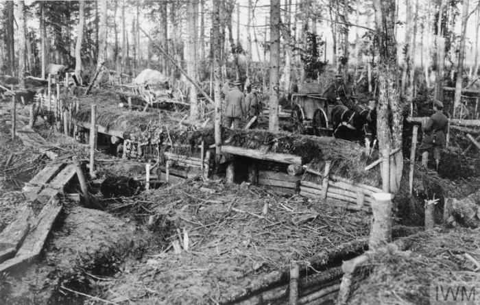 THE GERMAN OCCUPATION OF LATVIA, FEBRUARY-NOVEMBER 1918