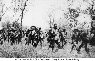 D1 Carrier corps Africa 1917
