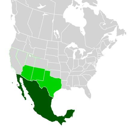 15.7.cc uzemní zisk mexika nabizeny v telegramu