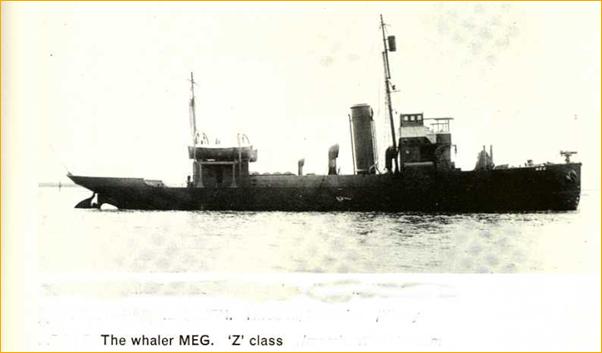 3.1.c Whaler
