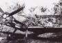 Messerschmitt-Bf-109E7-9.JG27-Yellow-1-Erbo-Graf-von-Kageneck-WNr-1326-Russia-Aug-1941-01