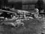 Focke-Wulf-Fw-190A8-5.JG301-White-21-WNr-682989-Germany-1945-03